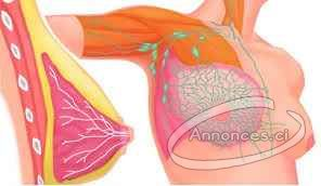 Soutien-gorge massant électrique pour raffermir vos seins sans ... 446cb64bc5c